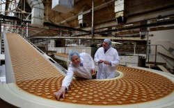 طرح توجیهی تولید بیسكویت ساده، میشكا و نان و شیرینی